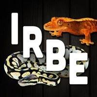 Indiana Reptile Breeders Expo