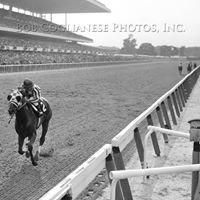 Bob Coglianese Photos, Inc.