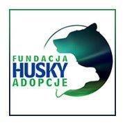 Husky Adopcje