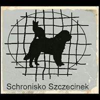 Schronisko dla zwierząt - Szczecinek