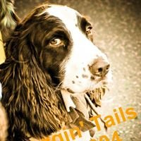 Waggin' Tails Pet Grooming