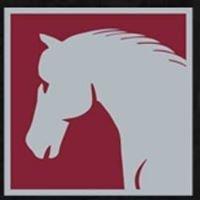 East Coast Equine Veterinary Service