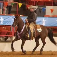 Outlaw Performance Horse Training