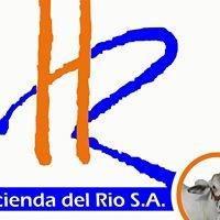 Hacienda del Río SA - Hacienda Las Camelias