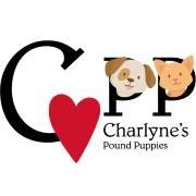 Charlyne's Pound Puppies