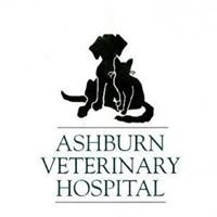 Ashburn Veterinary Hospital