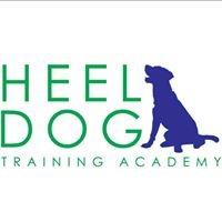 Heel Dog Training Academy - Clifton Park, NY