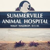 Summerville Animal Hospital