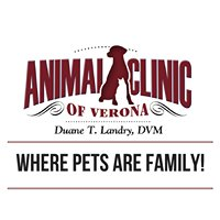 Animal Clinic Of Verona