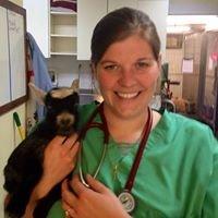 Lovingston Veterinary Hospital