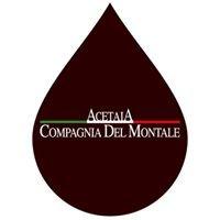 Aceto Balsamico di Modena - Acetaia Compagnia Del Montale