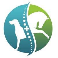 Capital Performance Veterinary Services