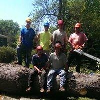 Kraft Tree Service