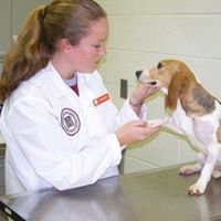 Animal Care Clinic, LLC