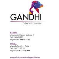 Clínica Veterinaria Gandhi Bailén