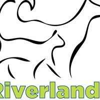 Riverlands Animal Hospital