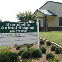 Branchville Animal Hospital