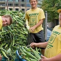 Alsum Sweet corn