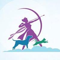 Artemis Pet Care & Massage