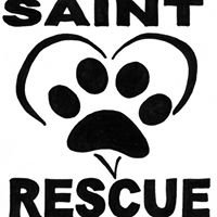 S.A.I.N.T. Rescue (Saving Animals in Need Today)