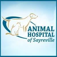 Animal Hospital of Sayreville