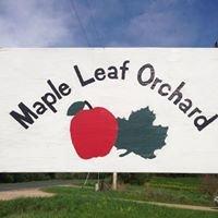 Maple Leaf Orchard