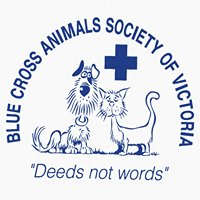 Blue Cross Animals Society of Victoria