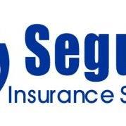 Seguro Insurance Services