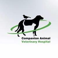 Companion Animal Veterinary Hospital, Dapto