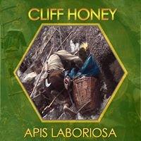 Wild Honey In Nepal