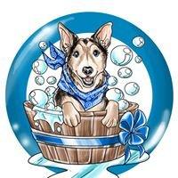 Peachy's Pet Salon- Dog Grooming