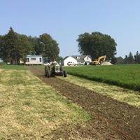 Pine Creek Farms