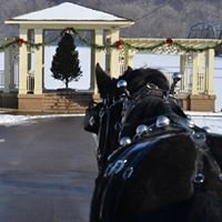 Independence Horse & Carriage Co.