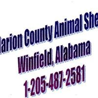 Marion County Shelter