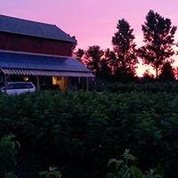 Blue Skies Farm