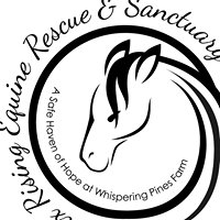 Phoenix Rising Equine Rescue and Sanctuary