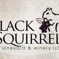 The Black Squirrel Vineyard & Winery, LLC