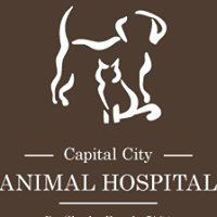 Capital City Animal Hospital