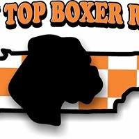 Rocky Top Boxer Rescue