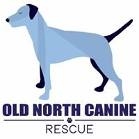 Old North Canine Rescue