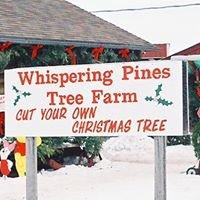 Whispering Pines Tree Farm, Oconto, Wi