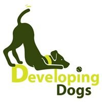 Sian Ryan at Developing Dogs