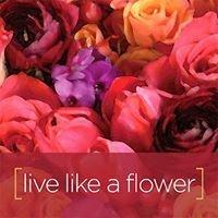Memorial Florists & Greenhouses