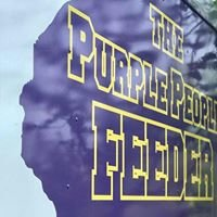 The Purple People Feeder