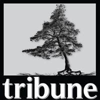 Jack Pine Tribune