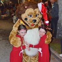 Venice Lions Club
