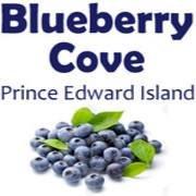 Blueberry Cove LongArm Quilting Studio