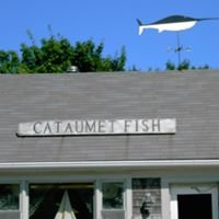 Cataumet Fish