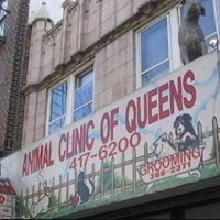 A Animal Clinic of Queens