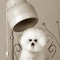 Puppy Love Kennels